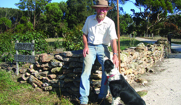 peter-with-sheep-dog