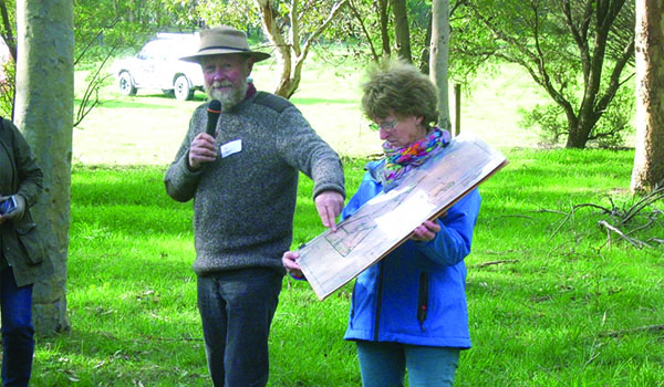 farm-forestry-advice-and-planning